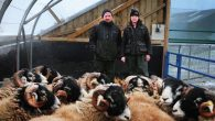 Directed byMagali Pettier 90 min | 2014 | UK | Not Rated Set in the North Pennines, UK, Addicted to Sheep is an intimate portrait of a year in the […]